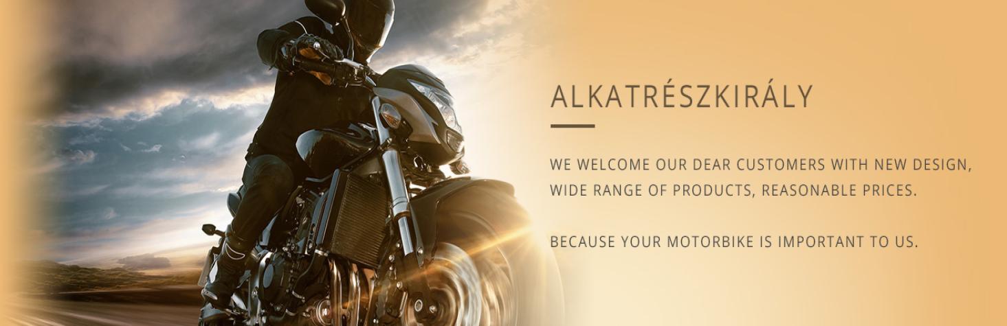 Motorcycle parts king website